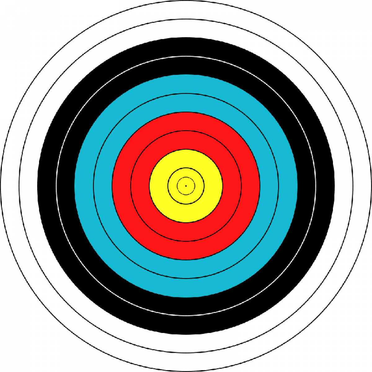 "Мишень JVD ""Target Fase Fita"" 80"